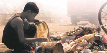 Slumdog ACORN
